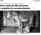 asinello di Graciosa riconosciuto specie protetta